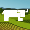 Rancher UI