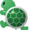 Sea Turtle Batch Image Processor